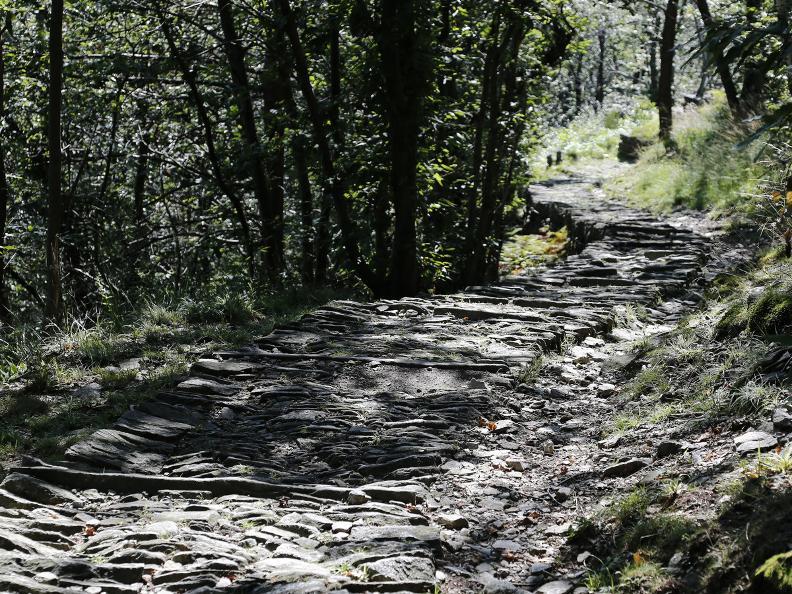Image 8 - Monte Comino - Slögna - Intragna