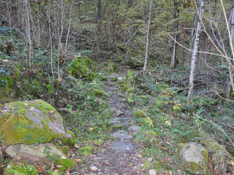 Image 19 - Val Bavona: Sonlerto - Waterfall of Foroglio - Bignasco