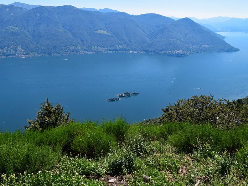 Image 10 - Rasa - Ronco sopra Ascona