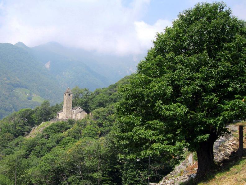 Image 1 - Monte Carasso: San Bernardo