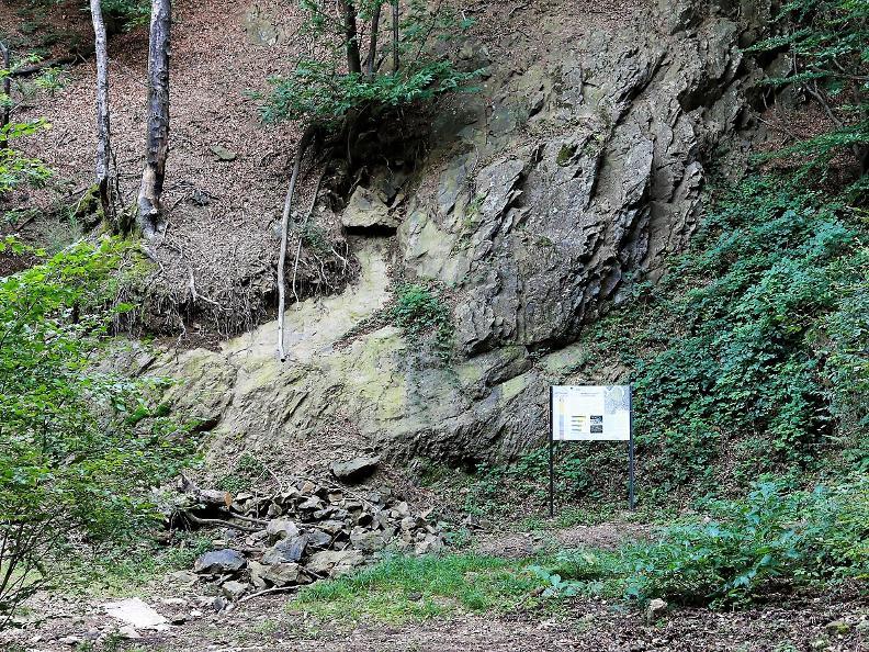 Image 9 - Sentier géo-paléontologique du Monte San Giorgio