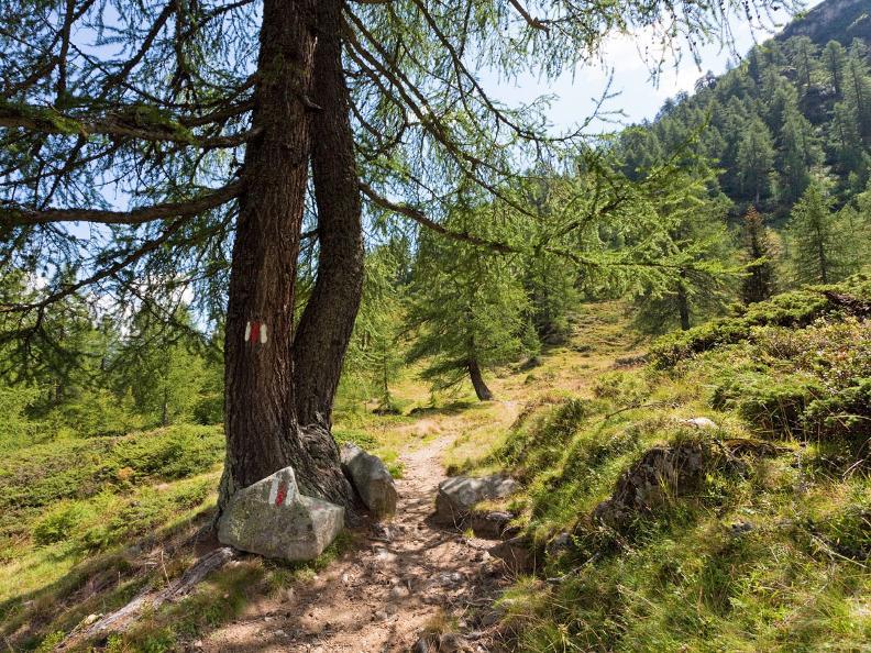 Image 5 - Sentiero Cristallina Tappa 3: Cap. Cristallina - Airolo