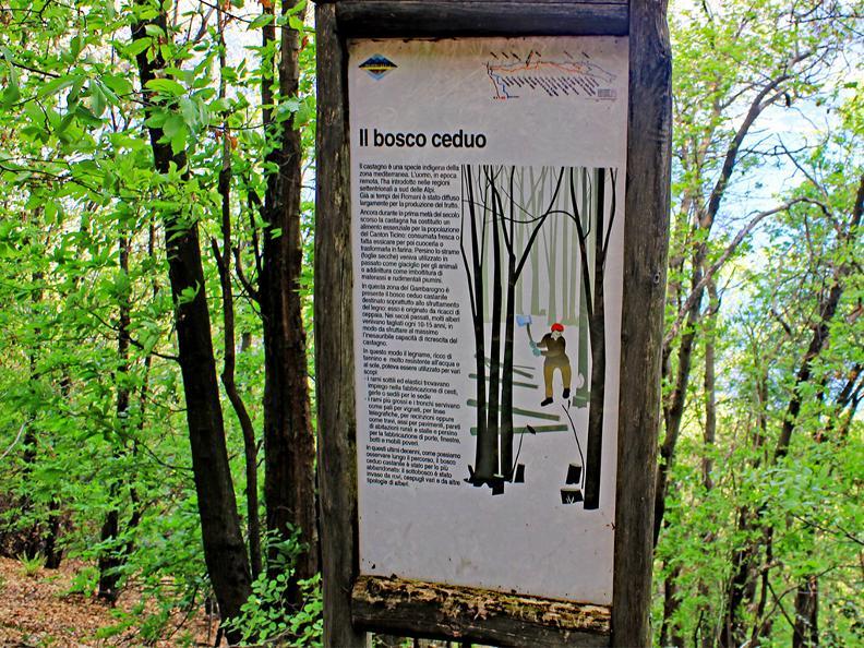 Image 4 - Entre montagnes et lac - Sentier pédagogique