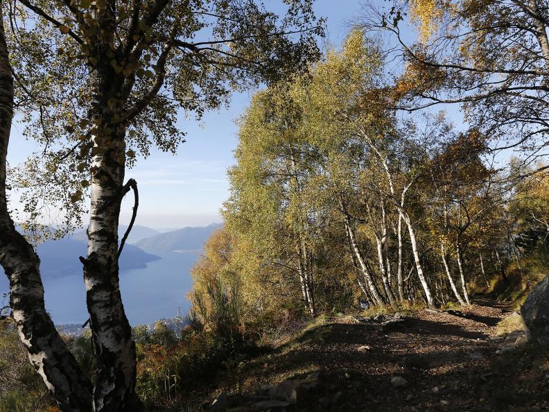 Image 2 - Cardada, Trosa and Mergoscia: breath-taking views