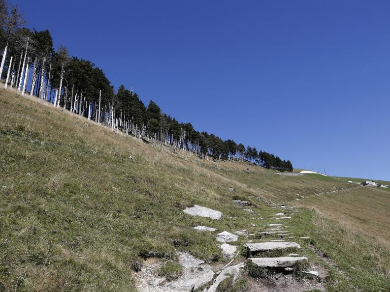 Image 15 - Discovering the Monte Generoso
