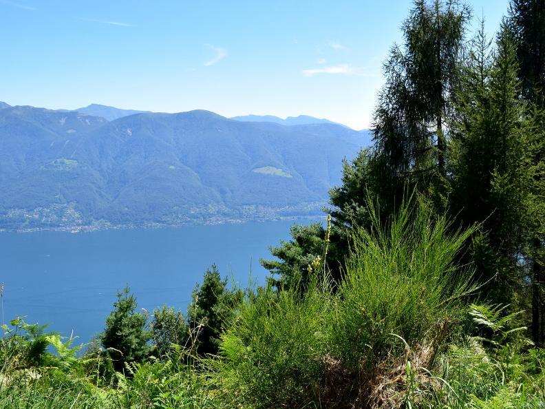 Image 10 - Ronco sopra Ascona - Corona dei Pinci