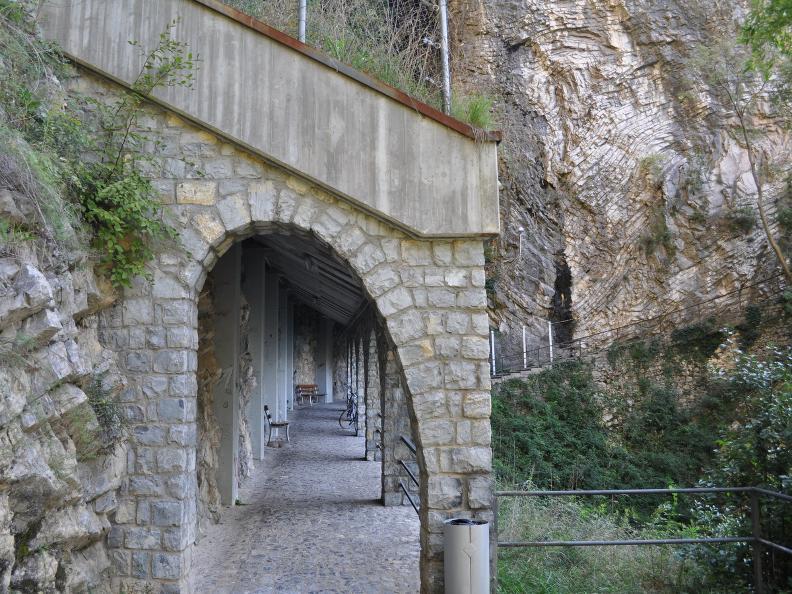 Image 7 - Olive path, Gandria