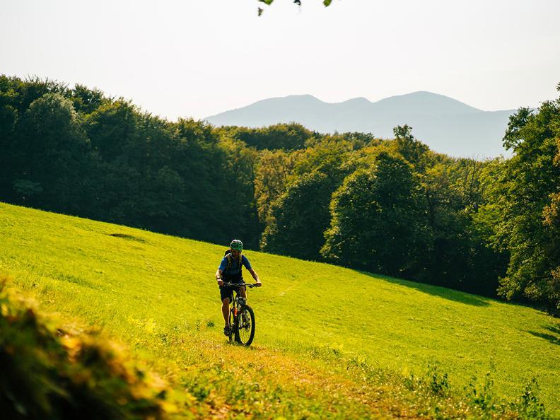 Image 0 - Collina d'Oro Bike