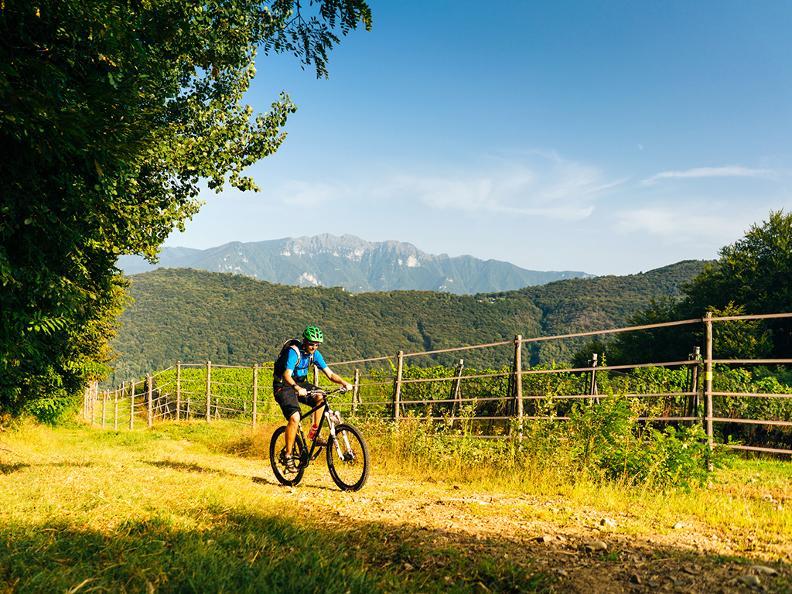 Image 2 - Collina d'Oro Bike