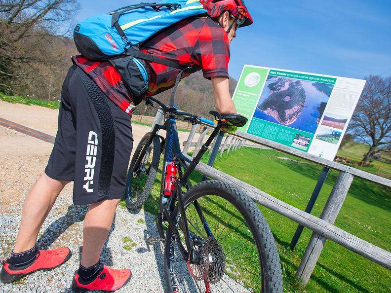Image 4 - Vicania Bike