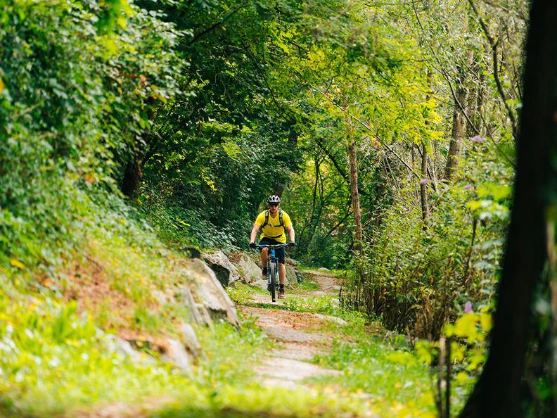 Image 1 - Tresa Bike
