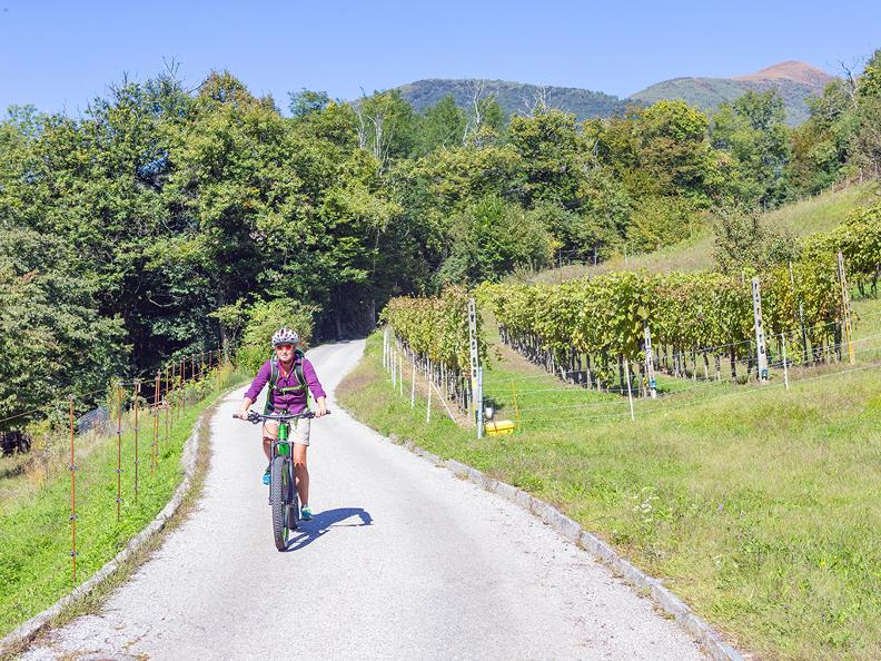 Image 8 - Tresa Bike