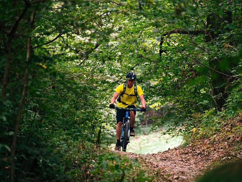 Image 1 - Castagno Bike