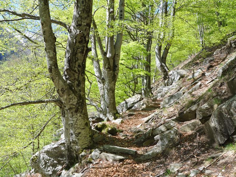 Image 1 - Lodano - Castèll - Alp da Canaa - Alp di Pii - Soláda d Zóra - Lodano