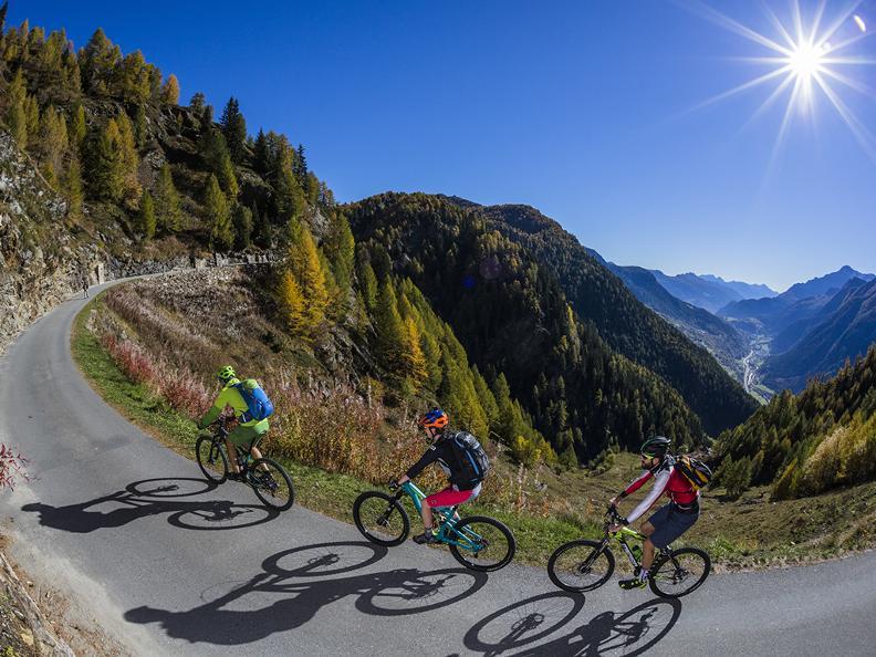 Image 2 - Gottardo Bike