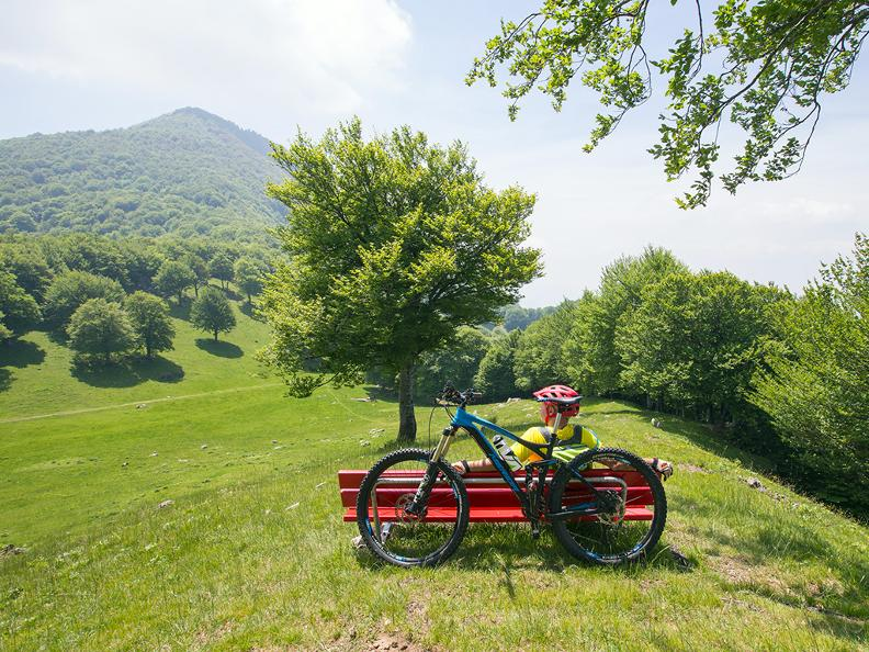 Image 9 - Brè Bike