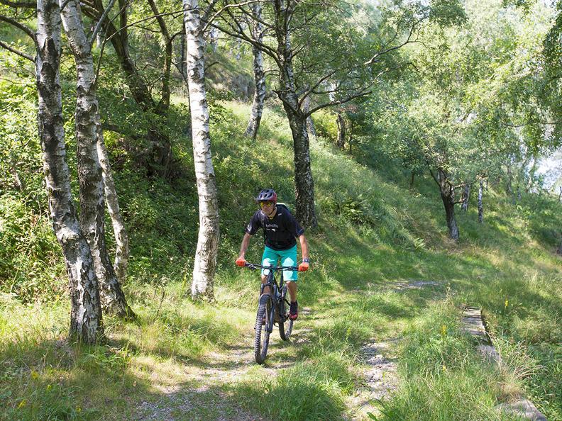 Image 1 - Isone Bike