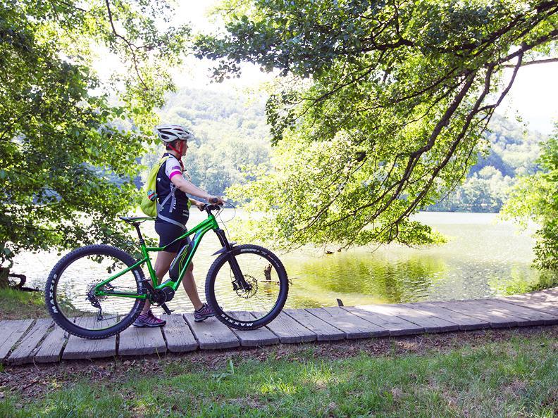 Image 9 - Origlio Bike