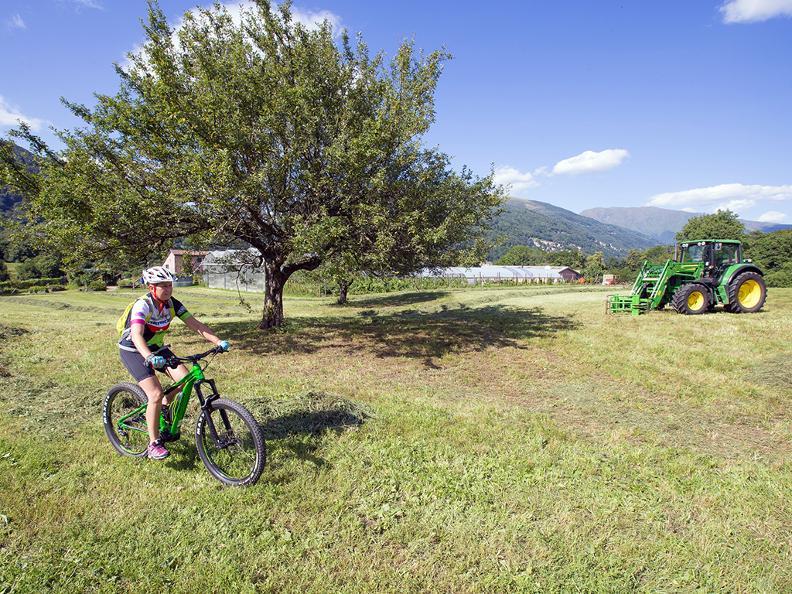 Image 6 - Origlio Bike