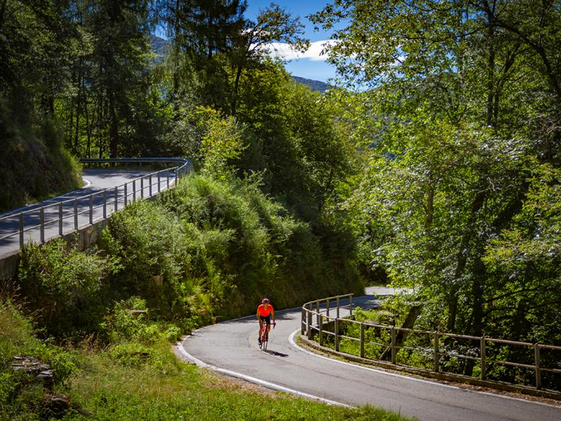 Image 2 - Locarno-Alpe di Neggia