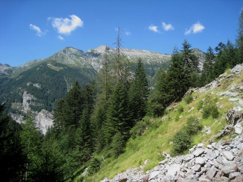 Image 0 - In the forest of the Vergeletto Valley