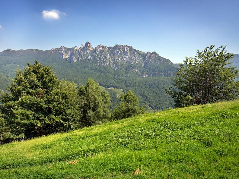 Image 2 - Denti della Vecchia: among pines and beeches