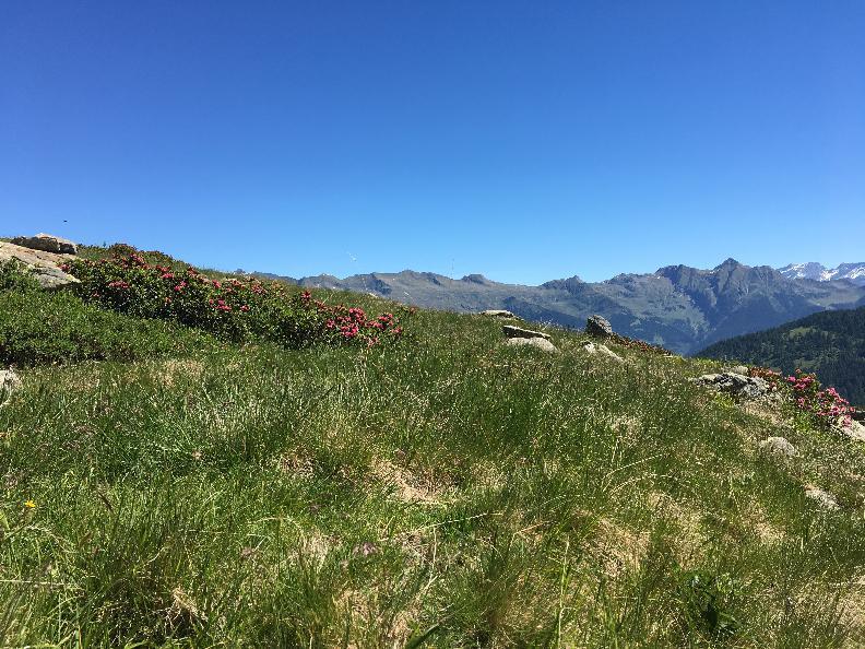 Image 7 - Sponda Hut – Campo Tencia Hut Crossing