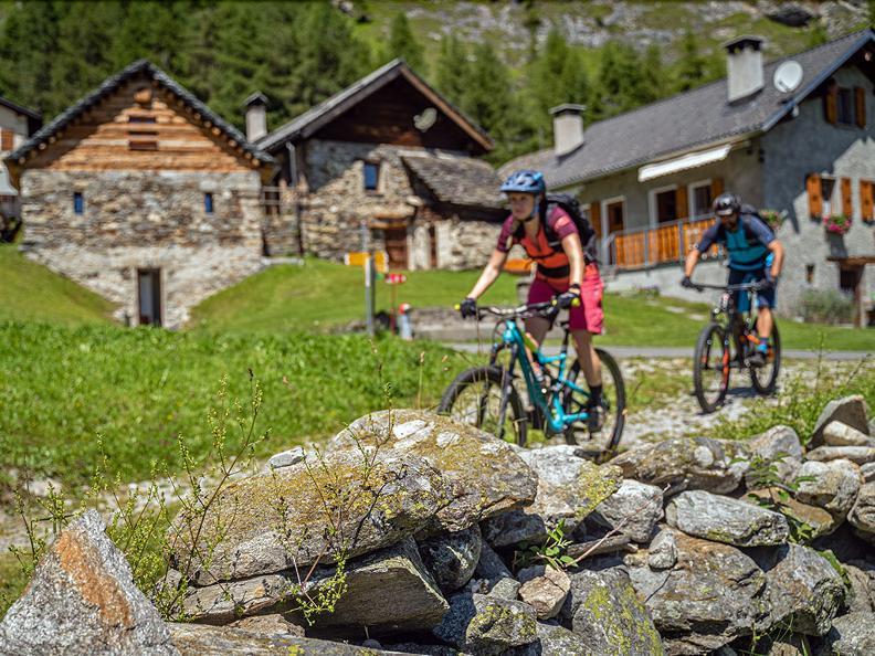 Image 2 - Cancorì Bike