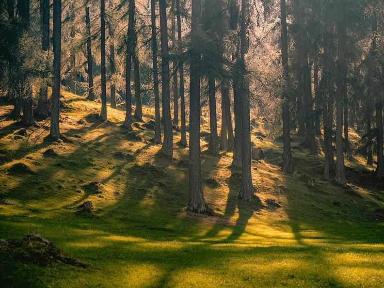 Image 15 - Hiking to Tremorgio and Morghirolo Lakes