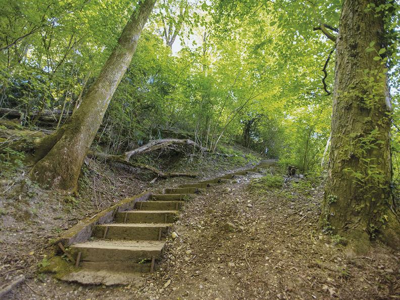 Image 1 - Monte San Salvatore nature trail