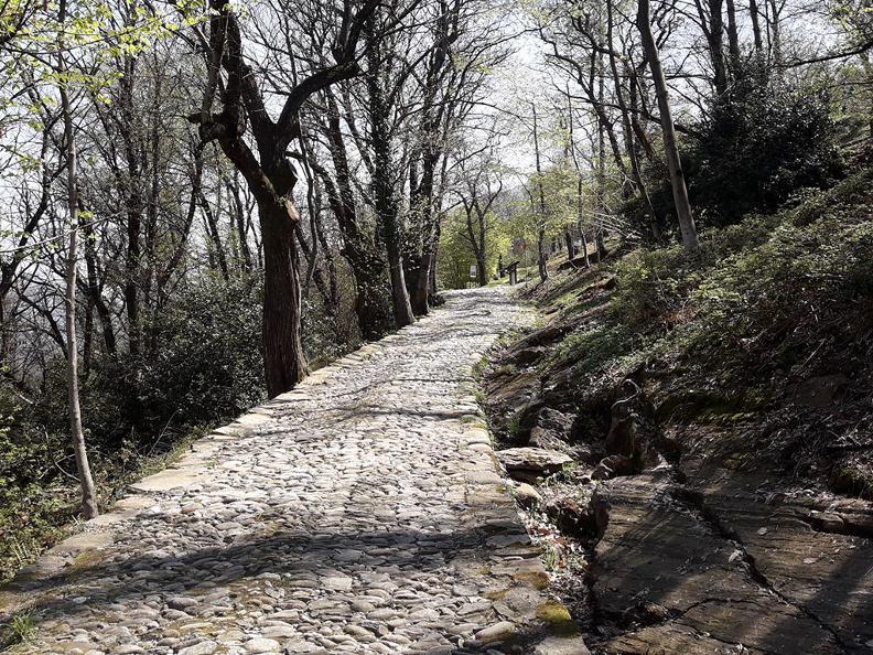 Image 5 - Via storica del Montecenerino