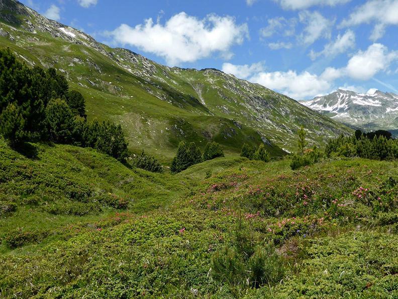Image 0 - Lukmanier Alps