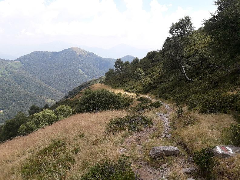 Image 5 - The Alpine Pasture Trail