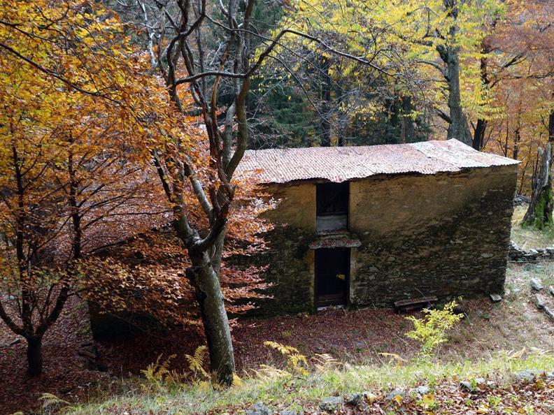 Image 3 - On the way of alpine pastures-2: Monte Lema - Tramboschino - Casera
