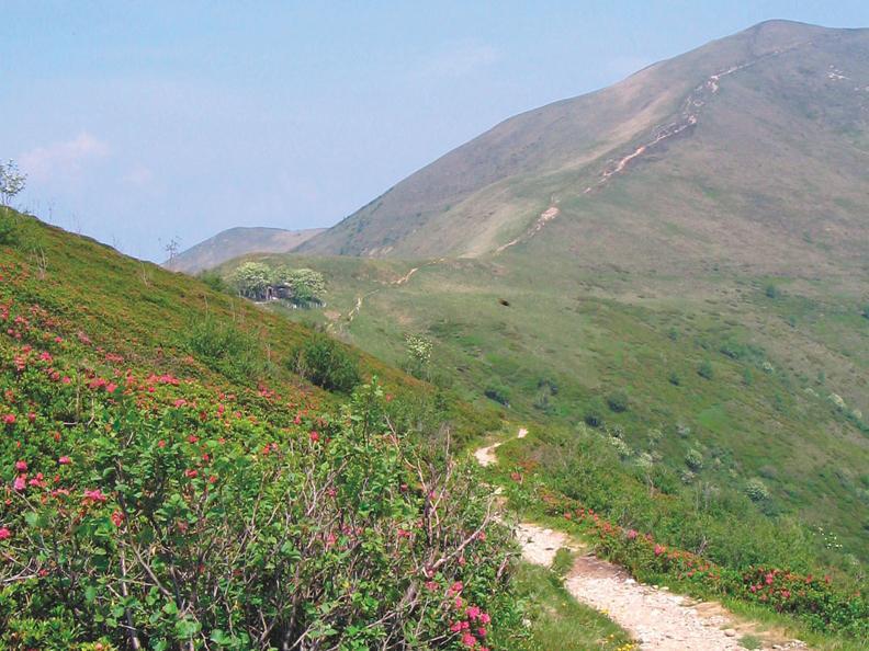 Image 4 - On the way of alpine pastures-4: Monte Lema - Alpe Agario - Fescoggia