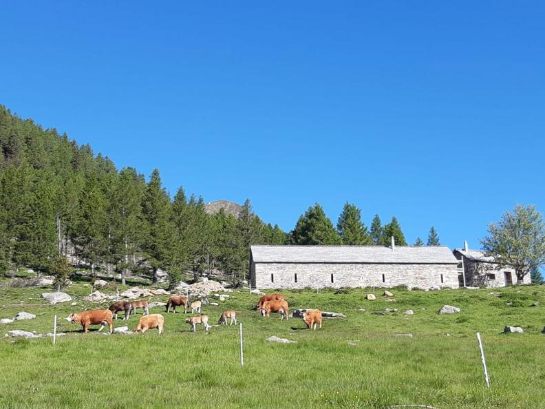 Image 4 - Trekking to the Capanna Albagno