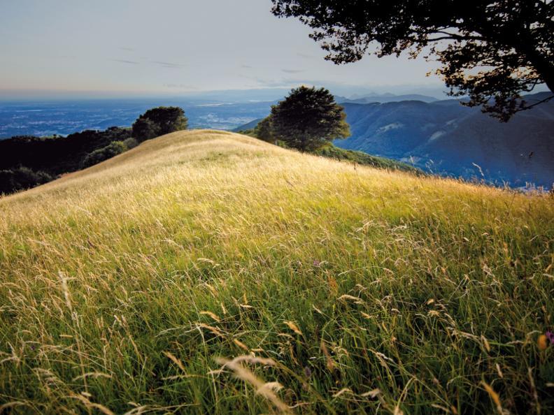 Image 3 - Sentiero del Monte Bisbino