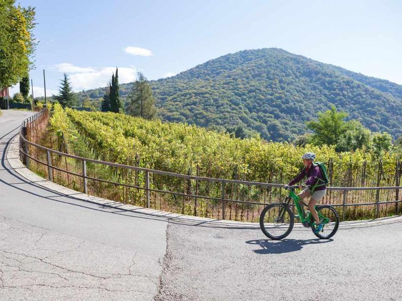 Image 3 - Lugano e-mtb tour: stage 1 Ponte Tresa - Miglieglia