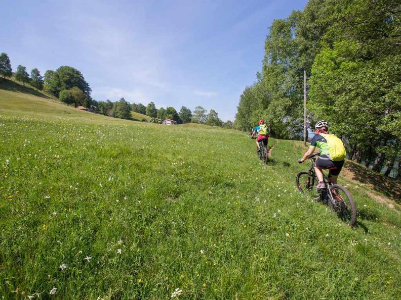 Image 5 - Lugano e-mtb tour: stage 5 Alpe Bolla - Morcote
