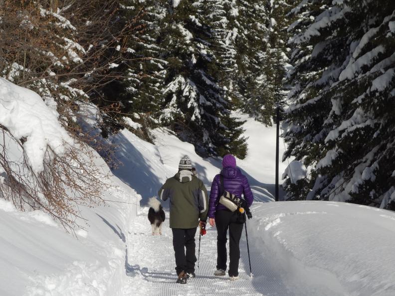 Image 2 - Winter walk Carì-Predèlp