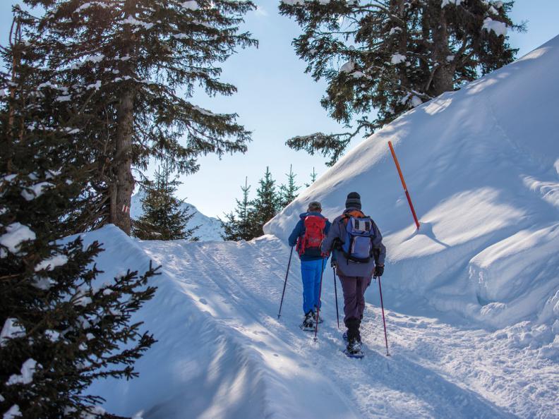 Image 2 - Snowshoe trail Nara-Cancorì