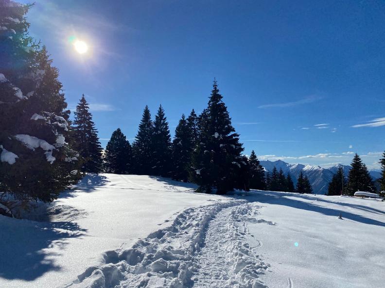 Image 2 - Snowshoe trail Mornera