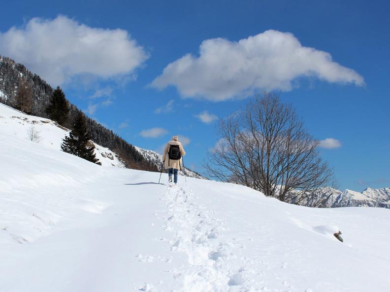 Image 1 - Snowshoe trail Ferder