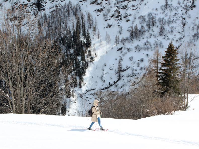 Image 6 - Snowshoe trail Ferder