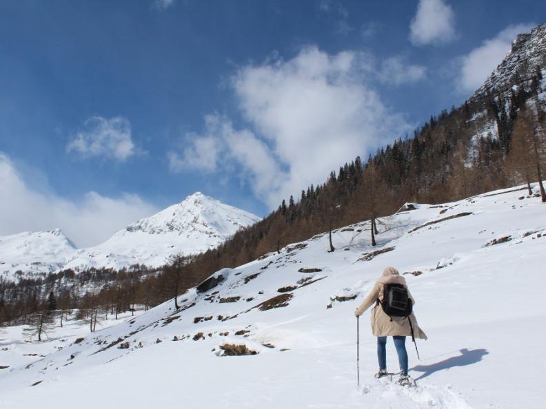Image 4 - Snowshoe trail Ferder