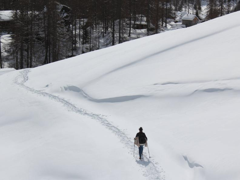 Image 8 - Snowshoe trail Ferder